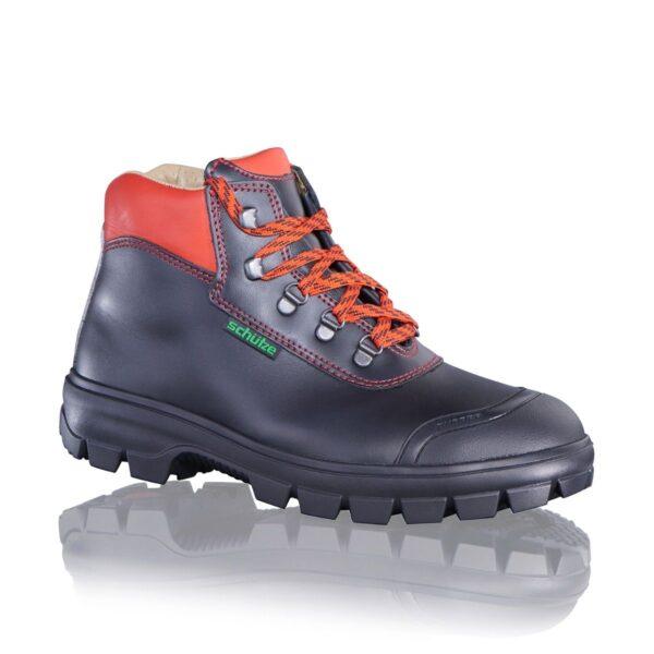 trpežni delovni čevlji